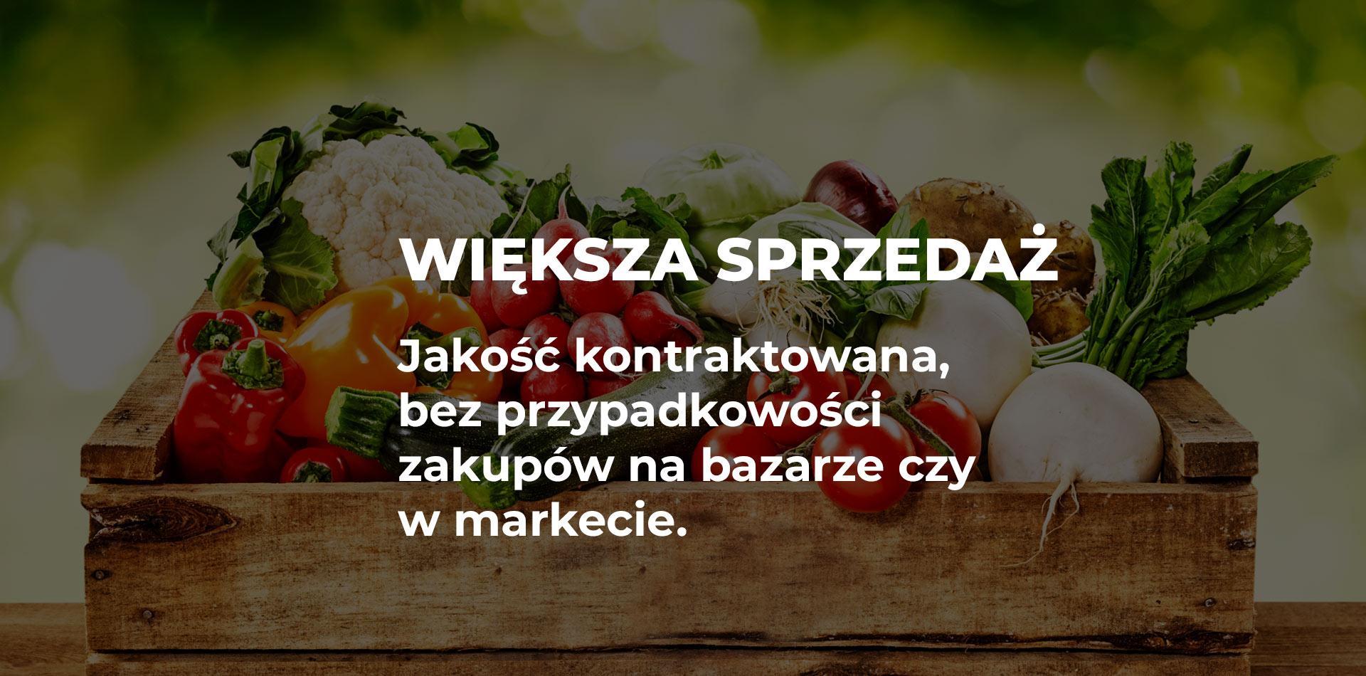 100% najwyższej jakości San Francisco nowy przyjeżdża Z Gruntu Polska – zdrowa żywność prosto od rolnika i przetwórcy